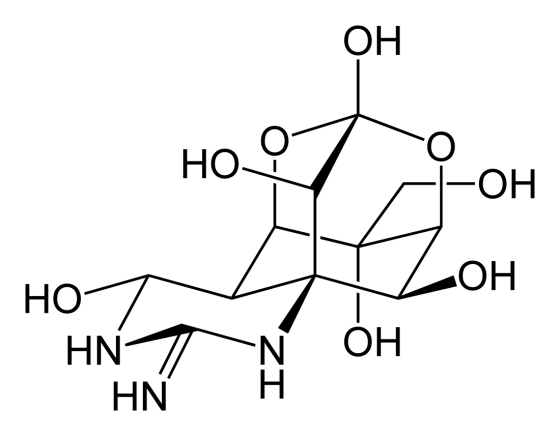 Tetrodotoxin-2D-skeletal